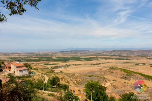 Rioja Area (Spain)